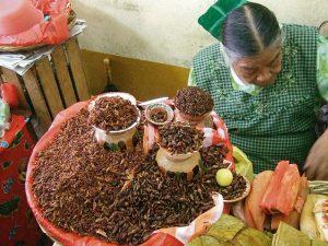 1024px-Chapulines.Markt.Oaxaca