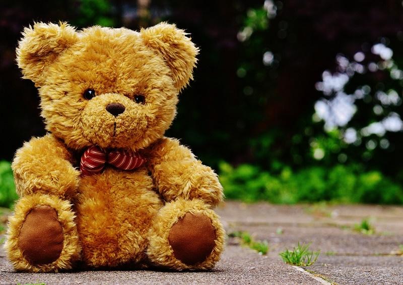 teddy-1444648_1280