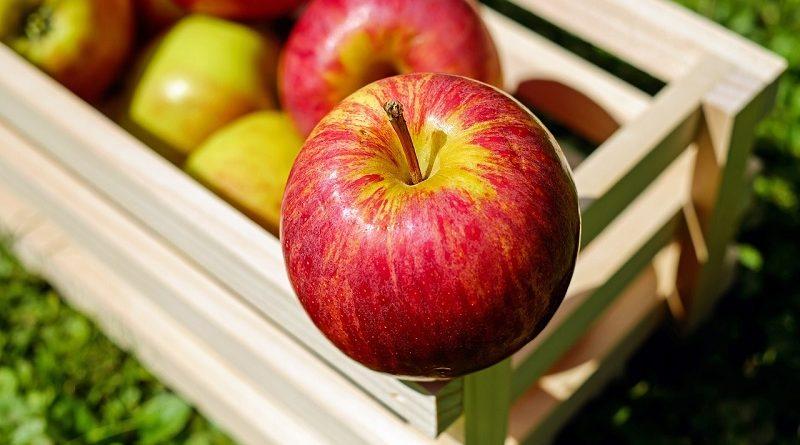 Beneficios que te aportan las frutas