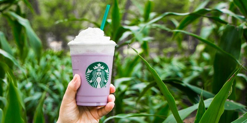 Taro al estilo Starbucks