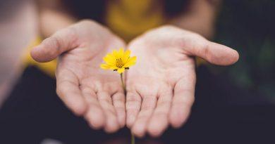 Primeros Auxilios Emocionales: cuidándote a ti mismo y a quienes amas