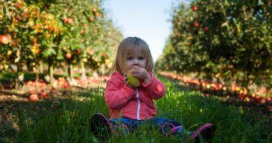 Manzanas, las consentidas de niños y niñas