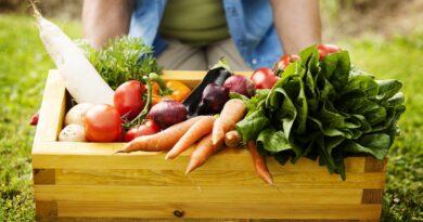 Listo el proyecto de dictamen de reforma a la Ley Federal de Variedades Vegetales