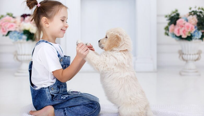 ¿Qué nutrientes necesita mi cachorro para una vida saludable?