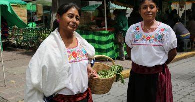Las cocineras tradicionales Nicolasa Hernández y Dalia Rodríguez en el mercado orgánico.