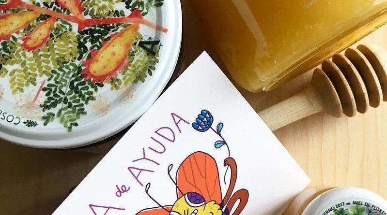 Conoce la miel de abeja mexicana que promueve la sororidad