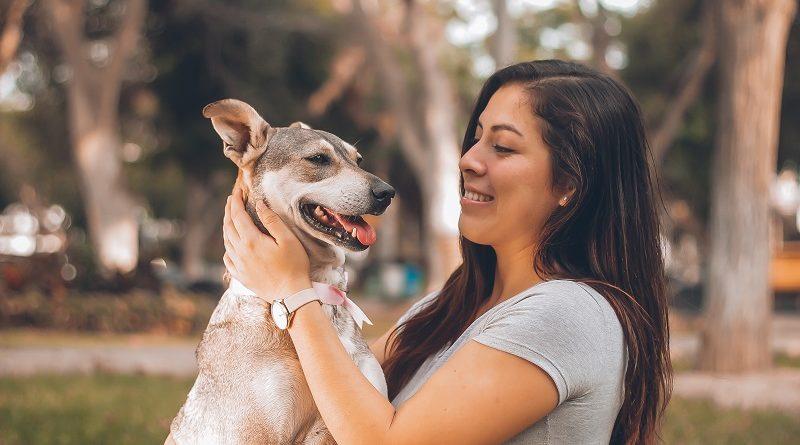Binomio Canino: por la salud de tu perro