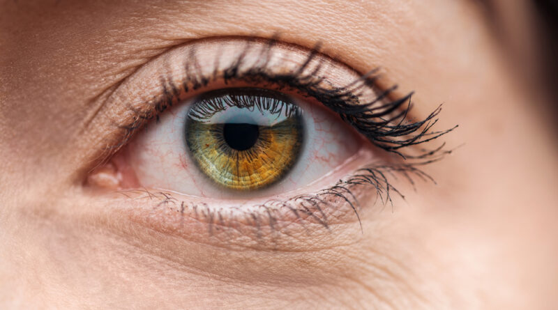 Retinopatía diabética, tercera causa de ceguera irreversible